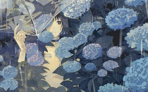 Picture girl, rain, umbrella, hydrangea