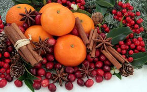 Picture holiday, cinnamon, tangerines
