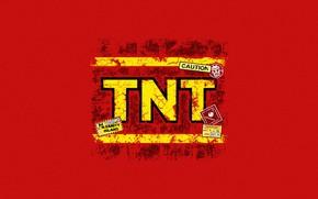 Picture Minimalism, Art, TNT, Crash Bandicoot, Game Art, Bandicoot, by Ronnie Araya, Ronnie Araya, N.Sane TNT