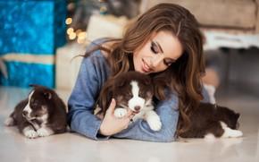 Picture dogs, model, hair, makeup, puppies, husky, Natalia Naidenko, Mozhayskiy Julia (Julia Catarina)