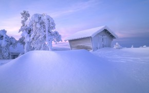 Picture winter, snow, trees, hut, the snow, hut, Russia, The Arctic, Andrey Bazanov