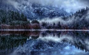 Picture Nature, Winter, Landscape, Lake, Trees