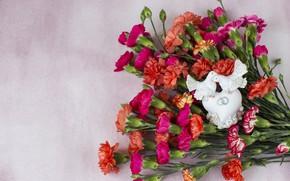 Picture flowers, pigeons, figure, clove