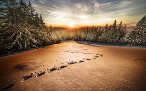 Picture winter, field, forest, the sky, the sun, clouds, rays, light, snow, sunset, traces, nature, dawn, …