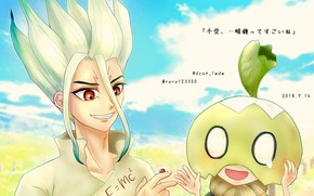 Picture boy, guy, Dr. Stone