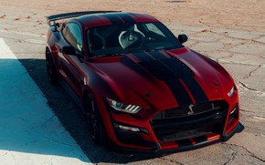 Picture Mustang, Ford, Shelby, GT500, shadow, bloody, 2019