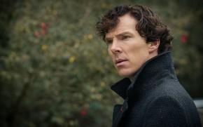 Picture Sherlock Holmes, Benedict Cumberbatch, Benedict Cumberbatch, Sherlock BBC, Sherlock Holmes, Sherlock (TV series)
