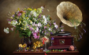 Picture bouquet, gramophone, peach, currants, apricots, Echinacea, mallow