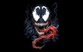 Picture background, black, venom, MARVEL, venom