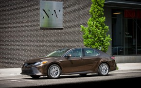 Picture wall, Toyota, sedan, 2018, Camry, XLE Hybrid