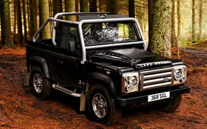 Picture forest, 2008, Land Rover, Defender, SVX, 60th Anniversary Edition