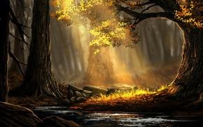Picture Trees, Forest, Light, Art, Forest, Ray, Environments, Rafael Batista da Silva, Golden forest, The Golden …