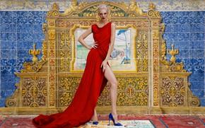 Picture model, interior, dress, blonde