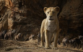 Picture lioness, The Lion King, The Lion King, hyenas, Nala