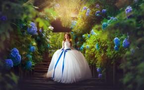 Picture girl, flowers, hair, dress, ladder, wedding, hydrangea, Ekaterina Skorobogatova