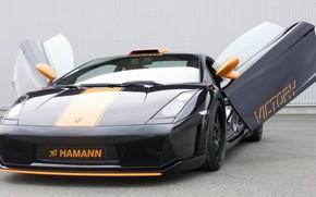 Picture coupe, Lamborghini, sports car, Gallardo, Hamann, tuning, Victory, sports car