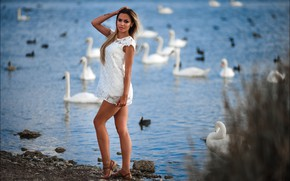Picture look, nature, pose, lake, model, portrait, makeup, figure, dress, hairstyle, blonde, legs, beauty, is, swans, …