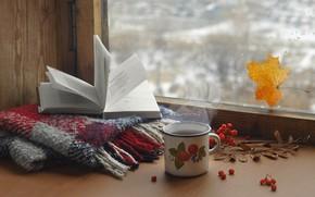 Picture glass, drops, sheet, tea, scarf, window, couples, mug, book