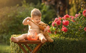 Picture toy, roses, baby, bear, spoon, jam