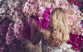 Picture girl, flowers, woman, blonde, girl, pink, orchids, woman, pink, flowers, beautiful, orchid, blond
