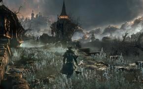 Picture landscape, night, hat, hunter, Bloodborne
