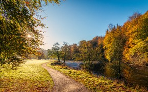 Picture autumn, the sun, rays, trees, river, England, Yorkshire