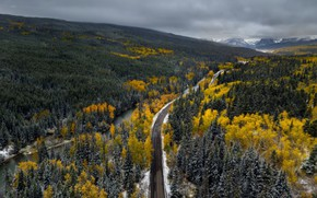 Picture road, forest, mountains