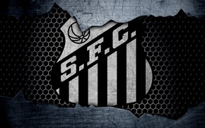 Picture wallpaper, sport, logo, football, Saints