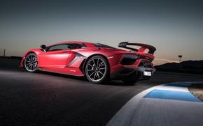 Picture Lamborghini, supercar, 2018, Aventador, SVJ, Aventador SVJ