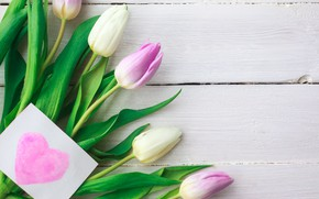 Picture flowers, bouquet, tulips, pink, white, fresh, pink, flowers, tulips, spring