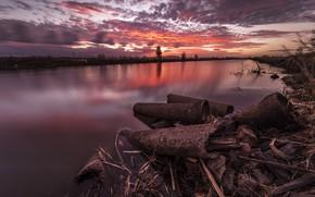 Picture sunset, shore, twilight, pond