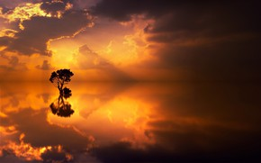Picture clouds, lake, reflection, tree
