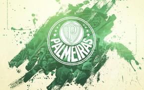 Picture wallpaper, sport, logo, football, Brazilian Serie A, Palm trees