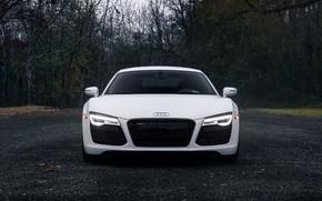 Picture Audi, Light, Front, White, V10, Face, VAG, LED