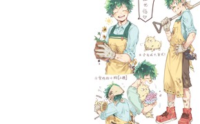 Picture cat, the gardener, My Hero Academia, Boku No Hero Academy, Midori Isuku, My Hero Academy, …