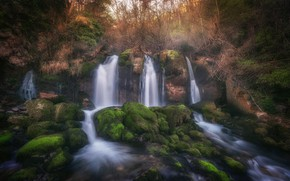 Picture forest, nature, stones, waterfall, moss