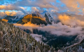 Picture winter, forest, clouds, mountains, view, Abkhazia, Fedor Lashkov