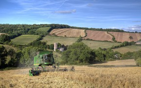 Picture wheat, field, field, cleaning, harvester