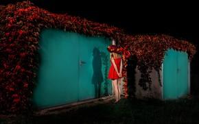 Picture girl, dress, the door, legs, in red