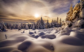 Picture winter, snow, trees, landscape, nature, ate, the snow, halo, Robert Didierjean