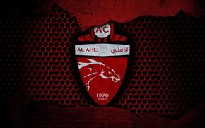 Picture wallpaper, sport, logo, football, Shabab Al-Ahli Dubai