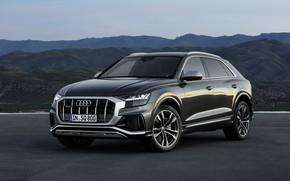 Picture Audi, TDI, SQ8