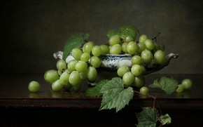 Picture leaves, grapes, green