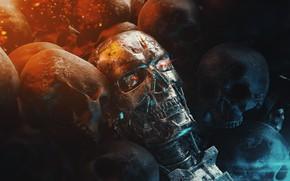 Picture Skull, Robot, Skull, Metal, Fiction, Terminator, Terminator, Characters, Science Fiction, Bone, by Richard Clayton, Richard …