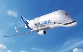 Picture the plane, The sky, the plane, Cargo, Airbus, Beluga, A300, Airbus Beluga, Super Transporter, Beluga …