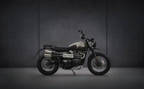 Picture bike, motorcycle, triumph, 900, 2021, street-scrambler