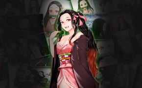 Picture nezuko kamado, Kimetsu no Yaiba, the blade cleaves demons