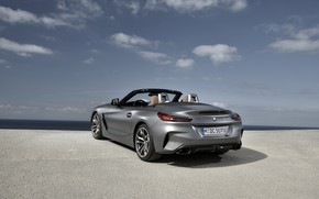 Picture the sky, grey, BMW, Roadster, rear view, BMW Z4, M40i, Z4, 2019, G29