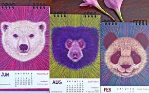 Picture flower, table, calendars, CALENDAR 2019, LOSING WILDLIFE