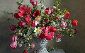 Picture cherry, bouquet, tulips, vase, daffodils, hellebore